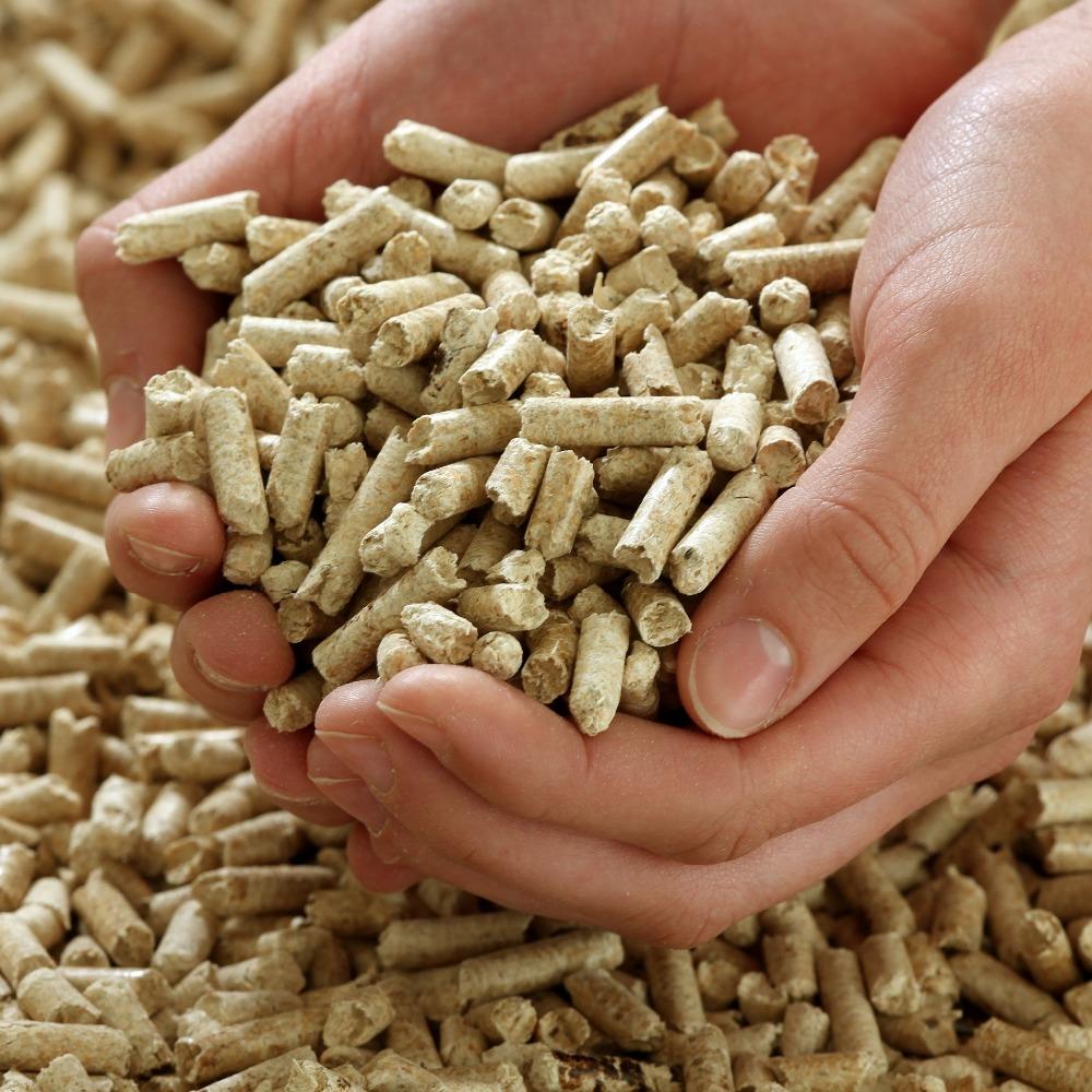 Biomass Pellets Market